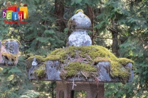 Nikko: moss on lanterns