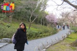 Tenryu-ji Garden with Ketaki