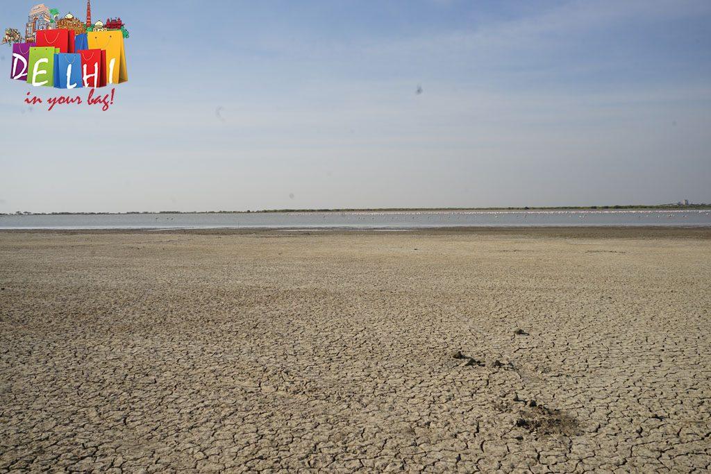 Little Rann dry earth