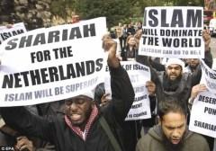 Moslim in Nederland