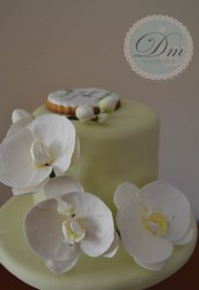 White Orchid Delight