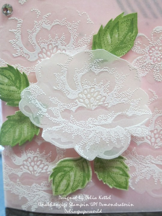 Weiße Rosen auf Vellum
