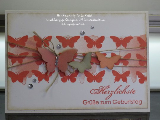 Schmetterlinge Calypso