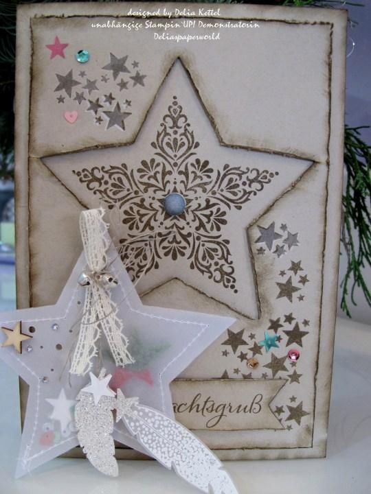 Weihnachtskarte mit Vellum-Stern 5 by Delia Kettel