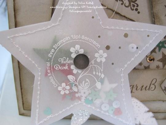 Weihnachtskarte mit Vellum-Stern 6 by Delia Kettel
