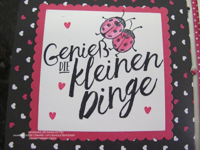 Mini-Album Pink mit Pep 12