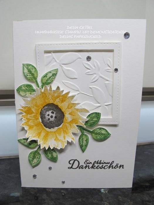 Set Sonnenblume 05