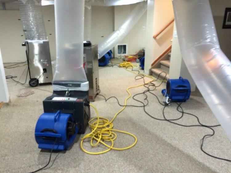 Basement flood clean up