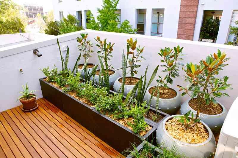 terrace garden decoration ideas