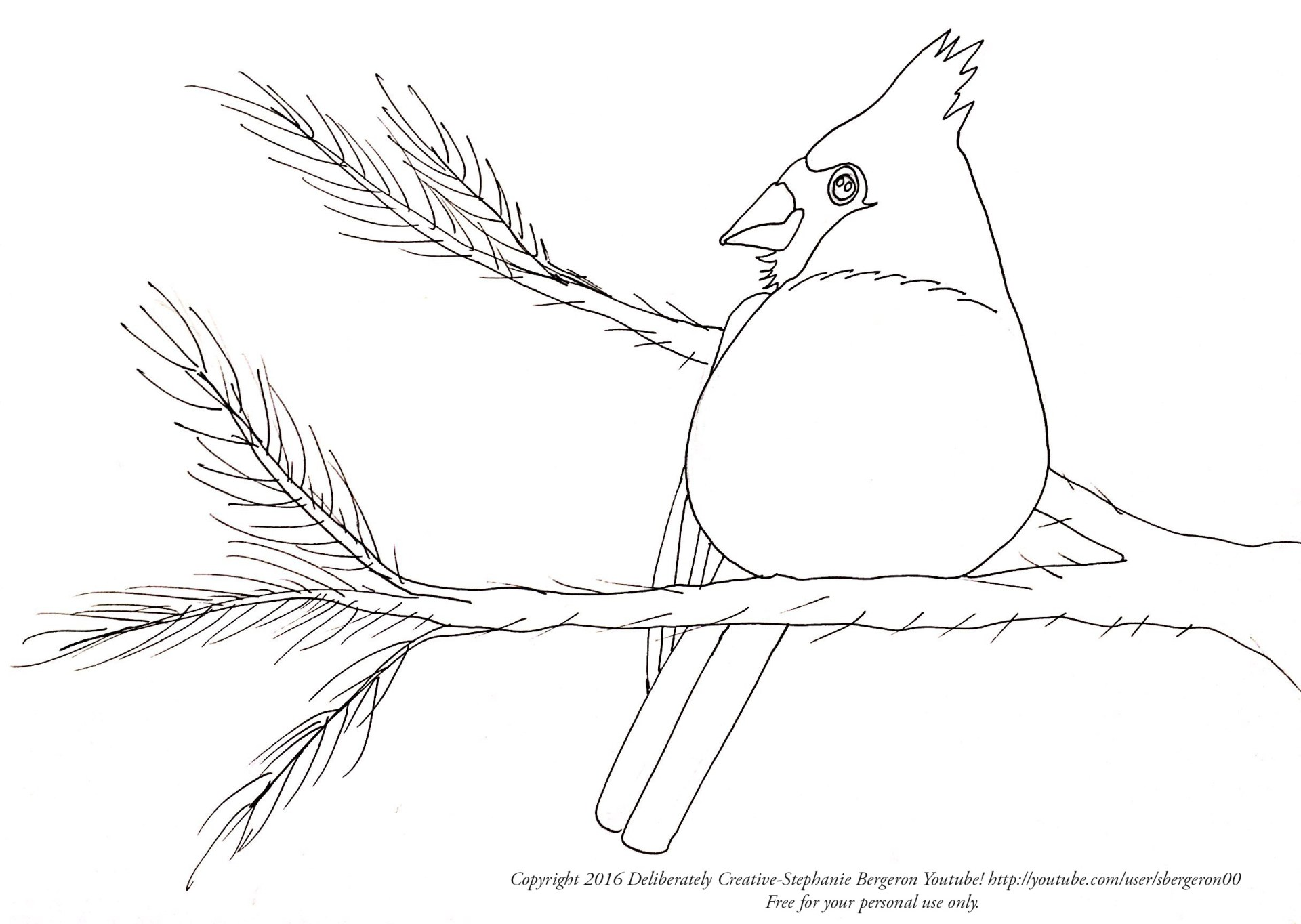 line art of cardinal on a branch