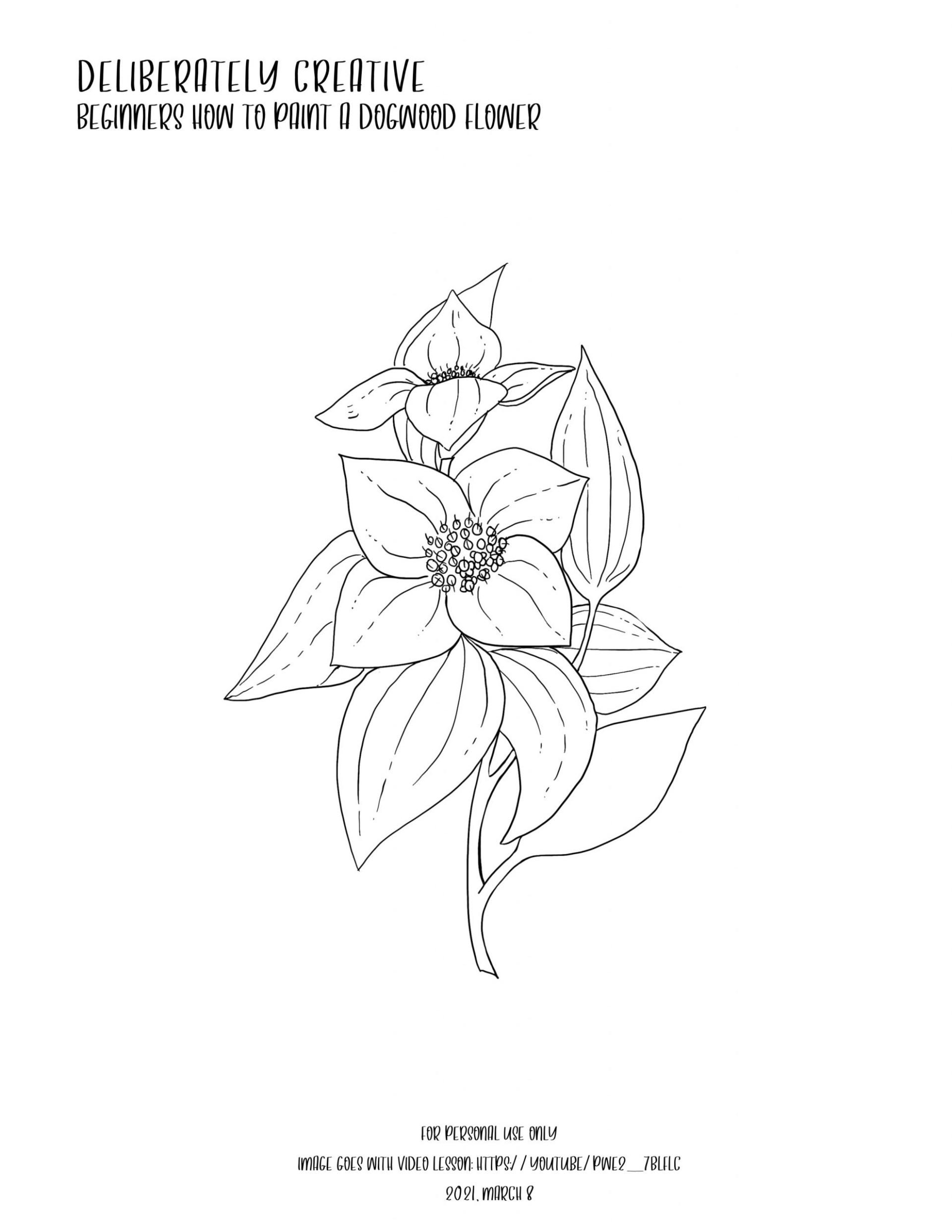 Black and white line art of dogwood flower