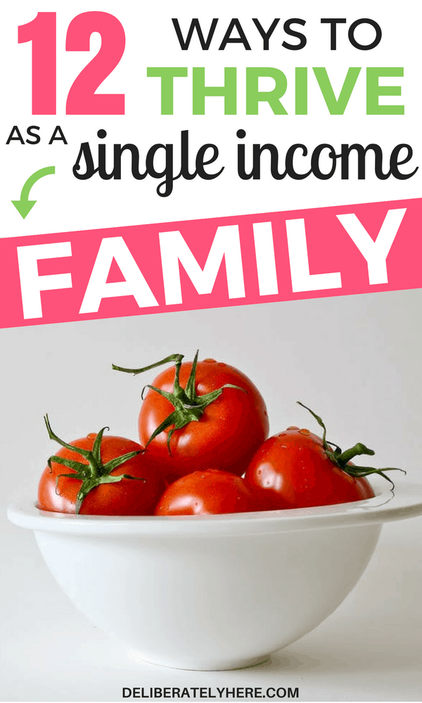 12 Ways to Save Money & Thrive As a Single Income Family