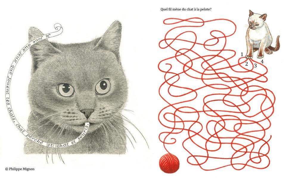 Le chat et la pelote - Jeu d'enfant