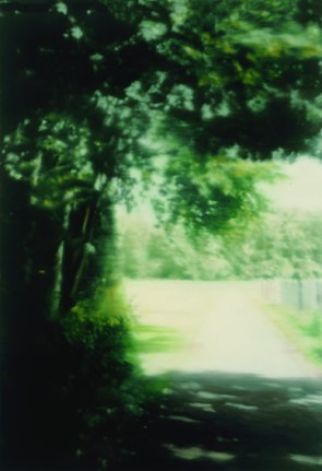Gerhard Richter, Summer Day