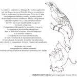 Coloriage - Le cabézon serpentin © Philippe Mignon