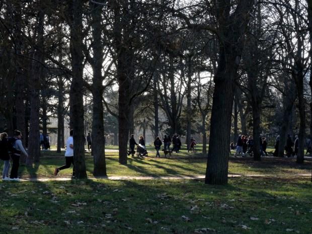 Le bois de Vincennes - Porte Dorée © Gilles Walusinski