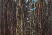 La forêt de Debussy
