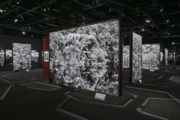 "Sebastião Salgado, ""Amazônia"" exposition la Philharmonie de Paris, 2021 © Gil Lefauconnier"