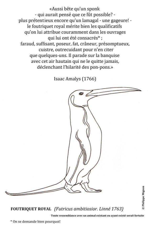 Coloriage - Le foutriquet royal ©Philippe Mignon