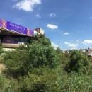 Guanajuato, musiques en tous genres