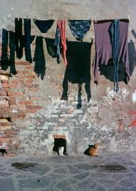 Photo Venise, 1978 ©Gilles Walusinski