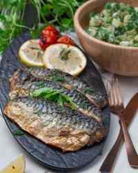 baked mackerel fillets recipe