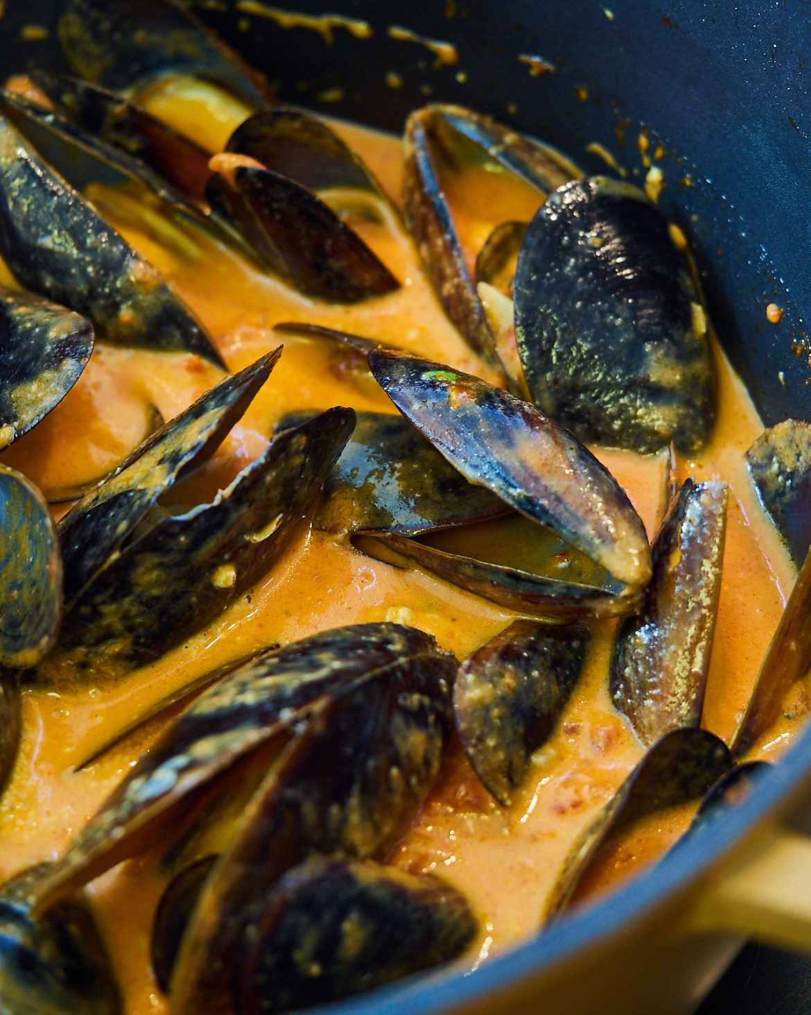 mussels in creamy tomato sauce