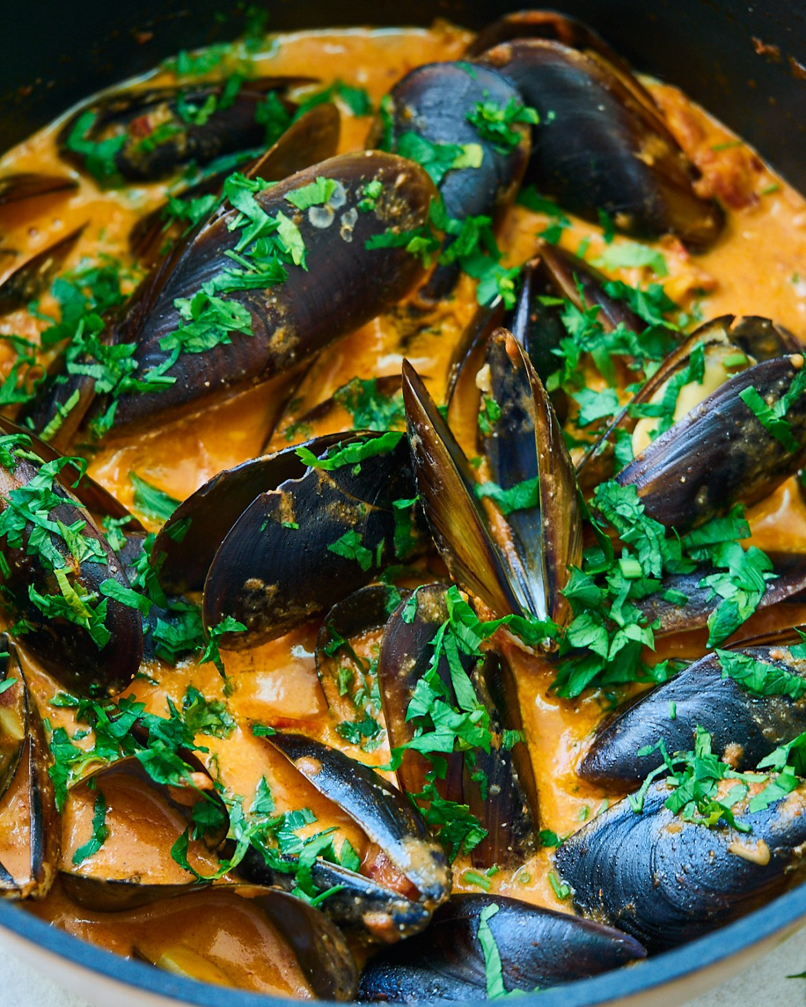 recipe of mussels in creamy tomato sauce