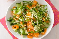 asian-carrot-and-sprout-salad-13580_l