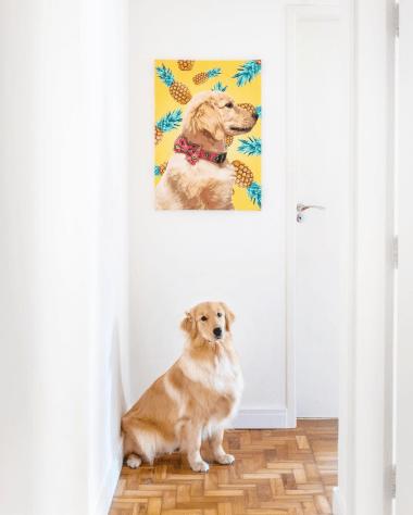 Dicas para fotografar cachorro: chame atençao pra camera. Por Delicia de Blog.