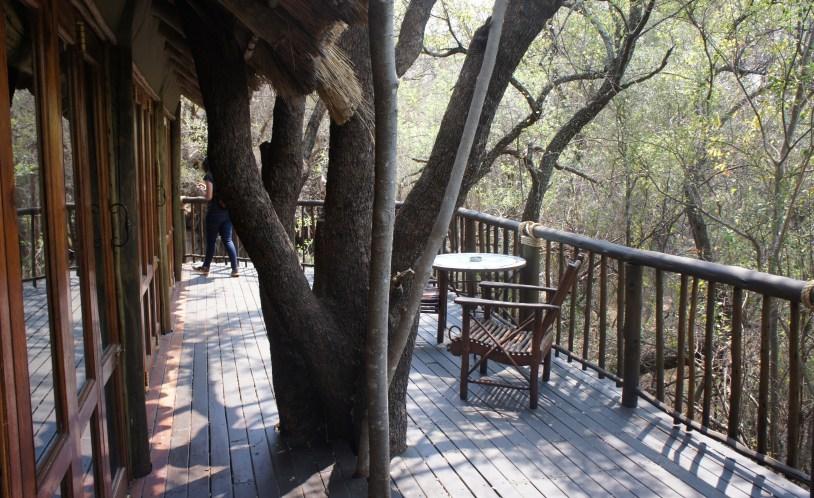 Varanda do quarto na arvore do Jacis Lodge, hotel safari na Africa do Sul