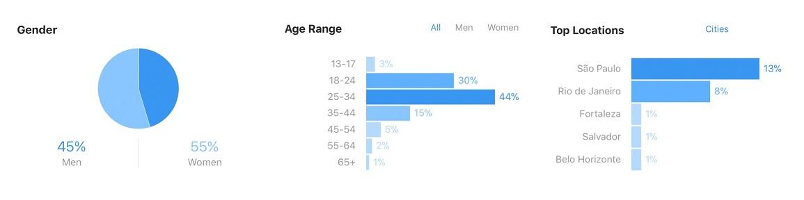 Estatisticas sobre audiencia no Instagram de Raíra Venturieri
