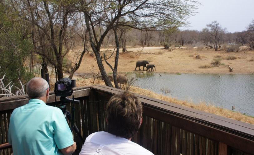Mirante do Jacis Lodge voltado para elefantes, na Africa do Sul