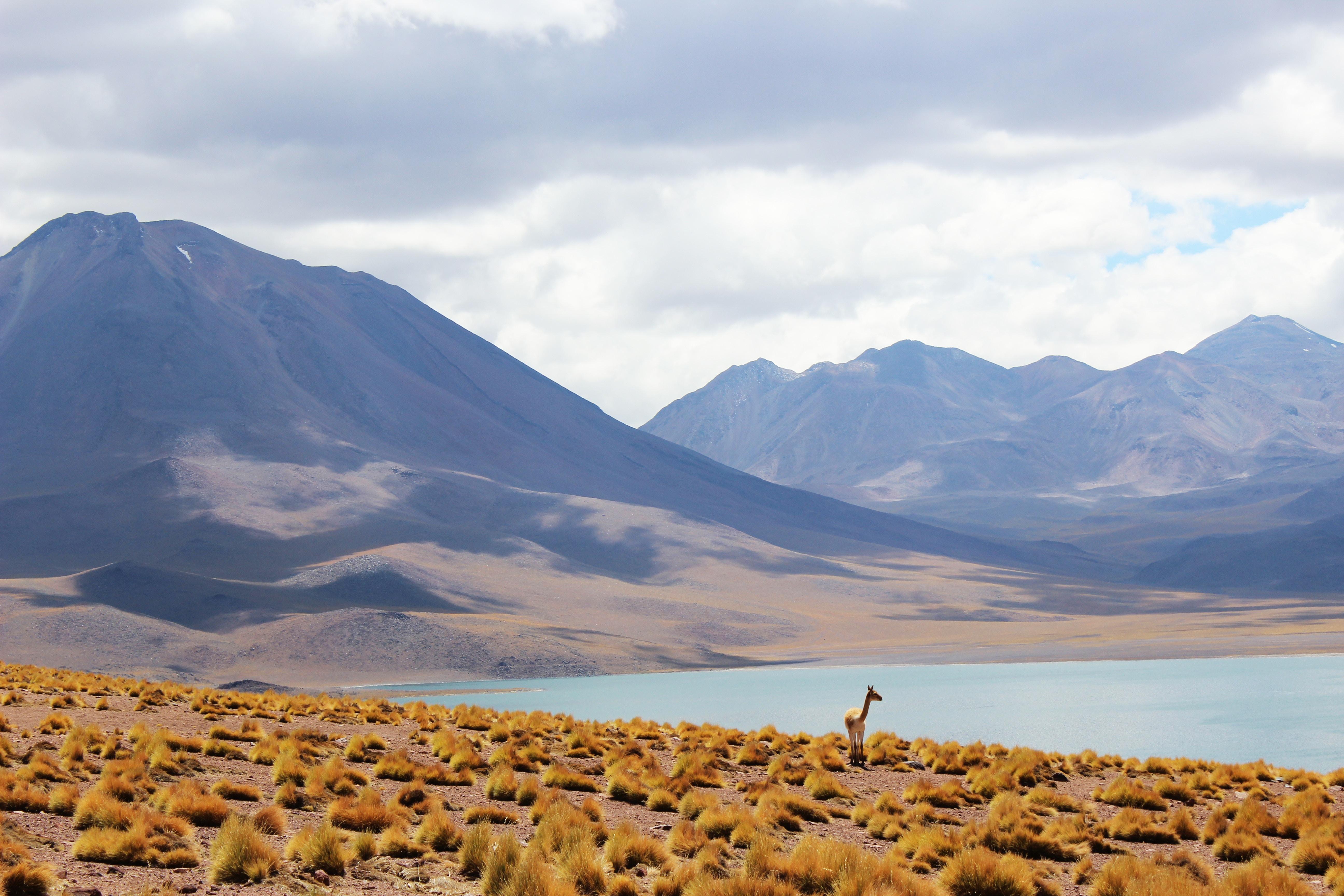 10 motivos para visitar o Chile em 2019