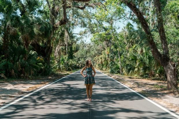 Paisagem de floresta no The Loop, em Daytona Beach