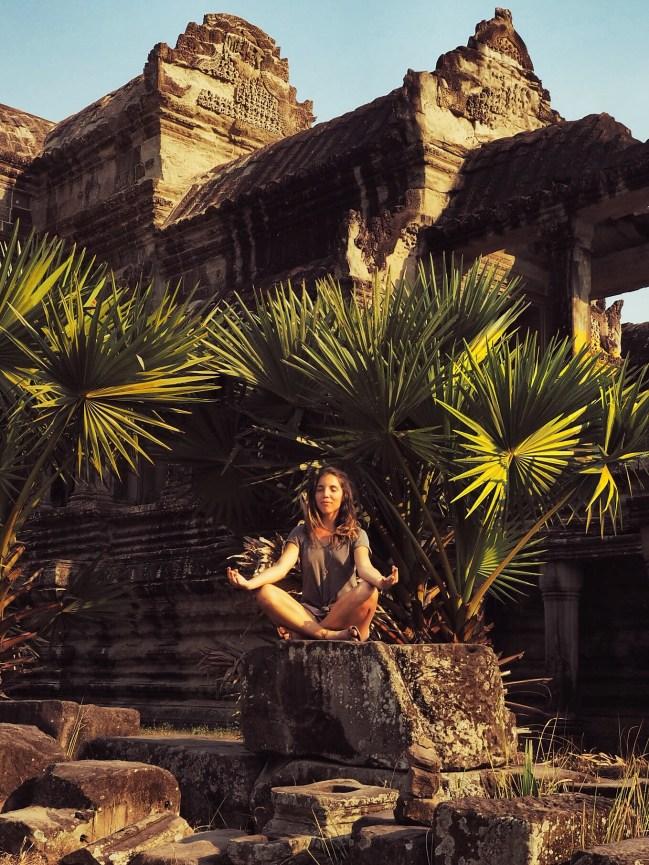 Délicieuse vie - Jardin Angkor Vat