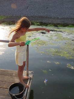 The Kid's favourite past time in Texel: crab fishing