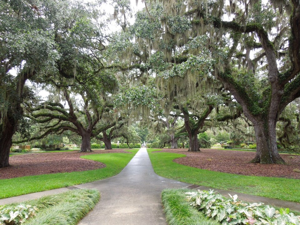 Brookgreen Gardens & Beach 107