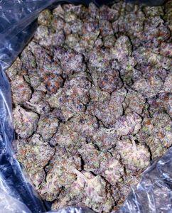 Runtz weed strain
