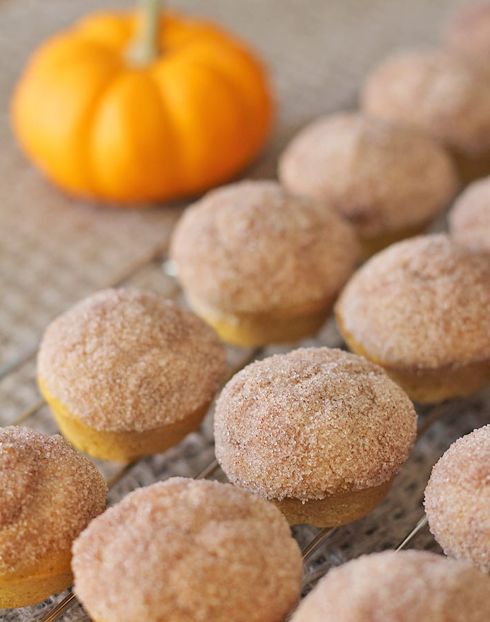 Pumpkin Spice Mini Muffins are the perfect tiny treat for fall days (or any other day!).