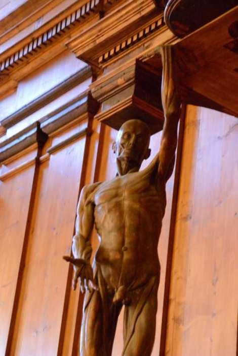 Visit Bologna_archiginnasio_teatro anatomico-2