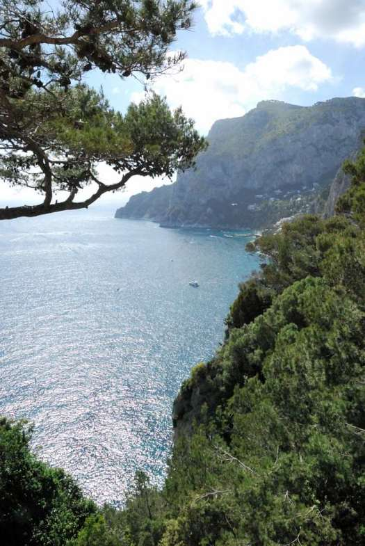 Capri walking itinerary - Capri's view