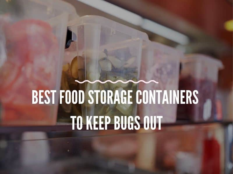 Some Food Storage Containers to Keep Bugs Out