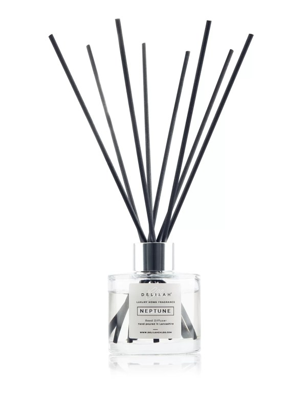 Neptune Reed Diffuser by Delilah Chloe. Luxury Rock Salt & Driftwood Reed Diffuser, Home Fragrance and Bath & Body