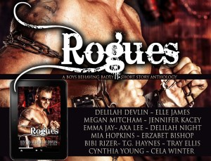 _Medi Kit_RoguesGraphic1