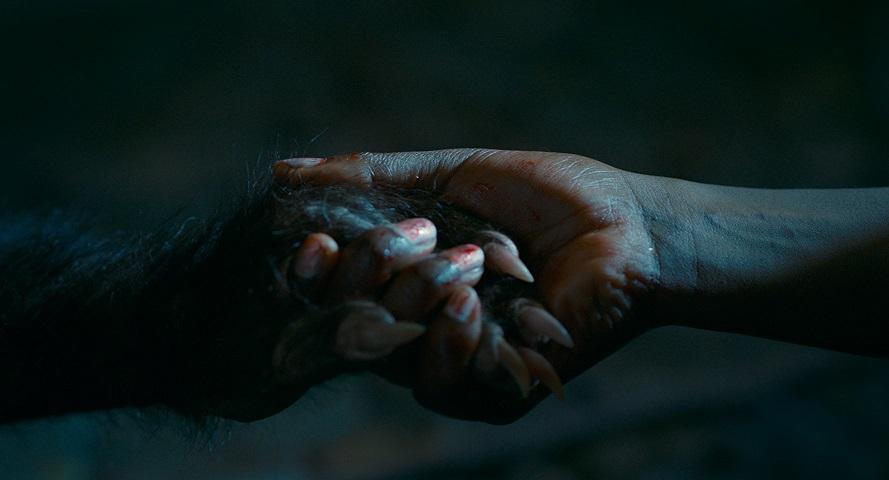 [CINEMA] As Boas Maneiras: Uma fábula de terror brasileira