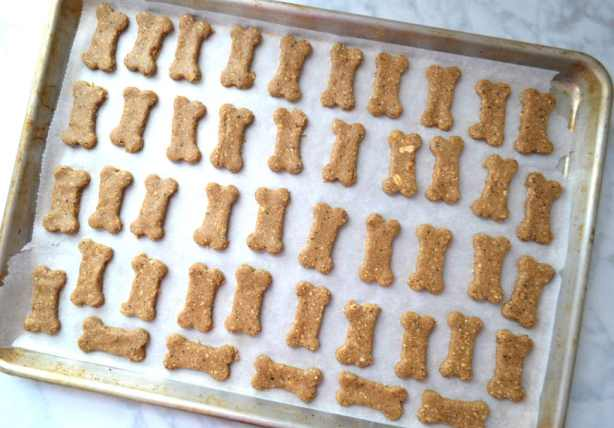 Oatmeal Peanut Butter & Blueberry Dog Treats   Delish D'Lites