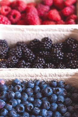 berries-blackberries-blueberries-1268100