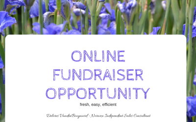 Need a Fresh Fundraiser??  Try Norwex!