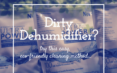 How do you clean your Dehumidifier?